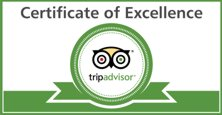 Trip Advisor - Excellence
